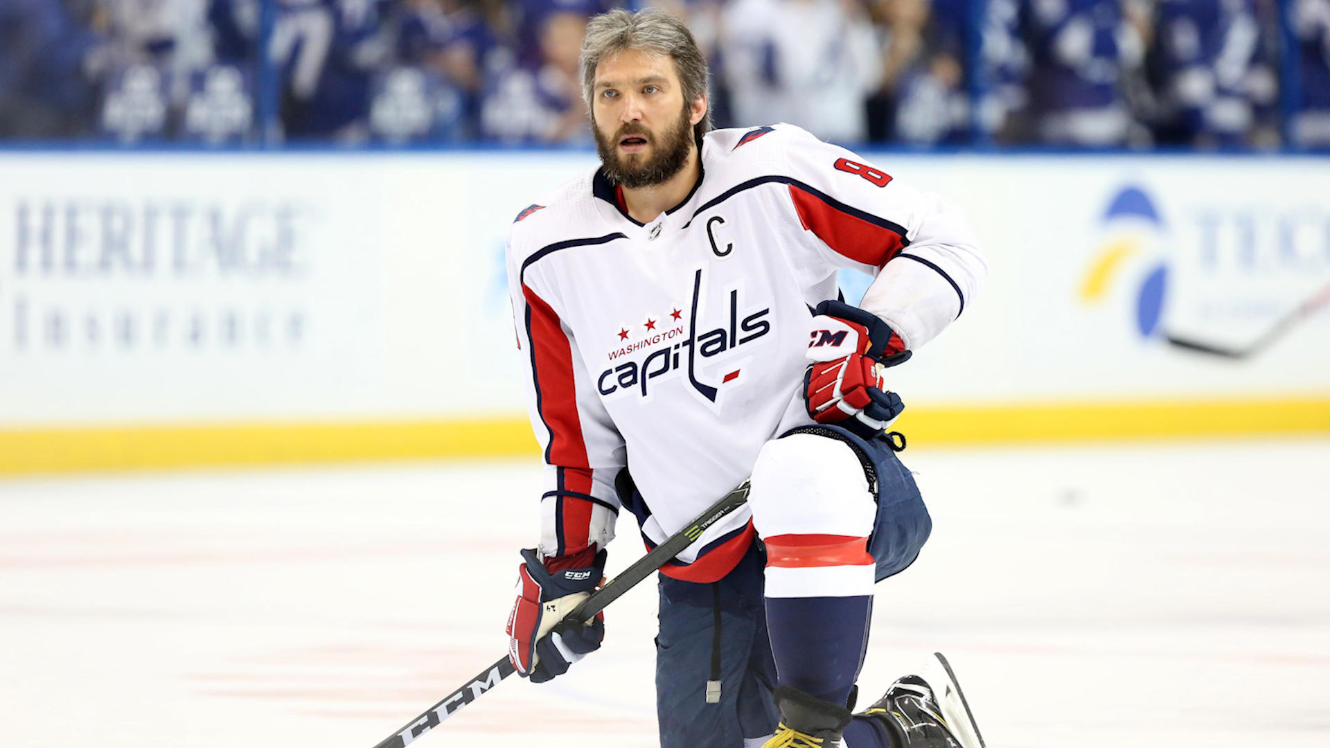 Image result for Capitals vs Golden Knights Live