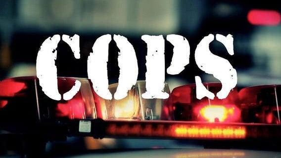 cops-paramount-network-20088275