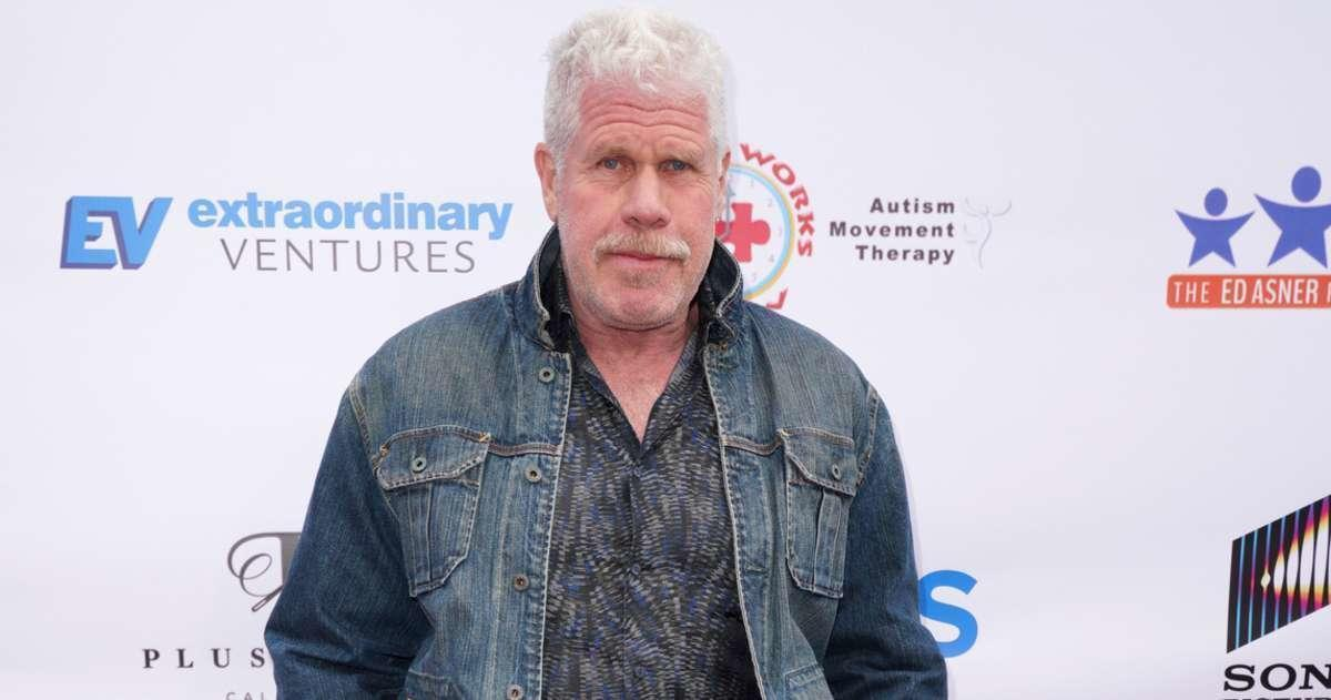 'Sons of Anarchy' Star Ron Perlman and Ex-Wife Opal Settle Divorce 2 Years After Split.jpg