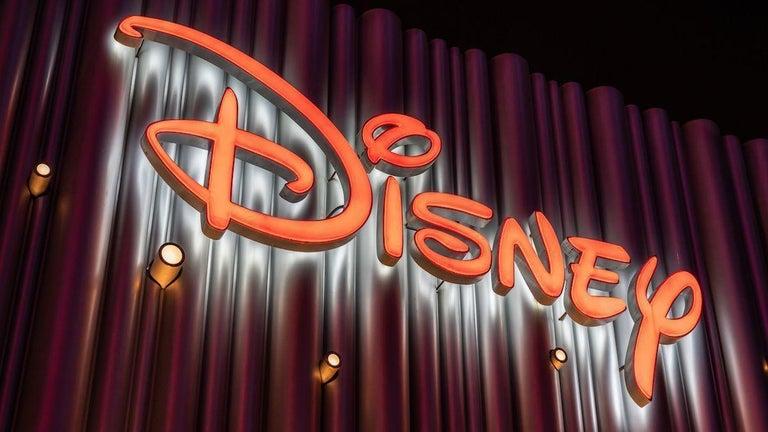 Disney+ Delays Upcoming Movie