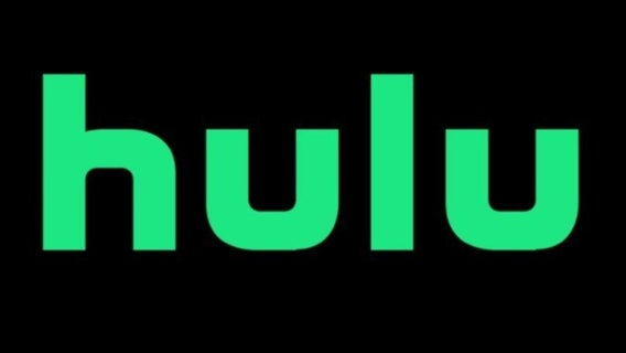 one-best-comedies-year-2021-now-streaming-on-hulu-barb-and-star-1275000