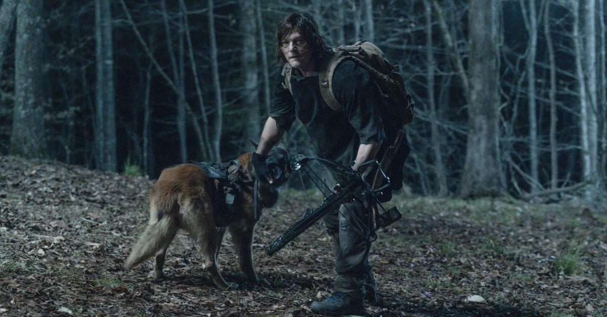the-walking-dead-daryl-dog-season-11-episode-4