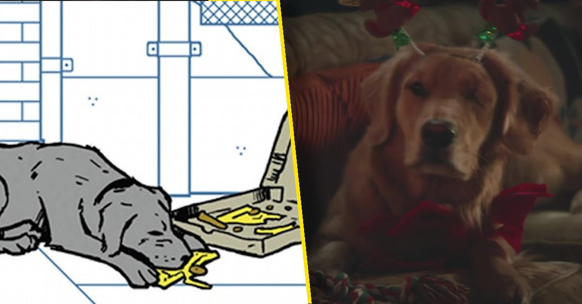 lucky-the-pizza-dog-hawkeye-trailer-fans