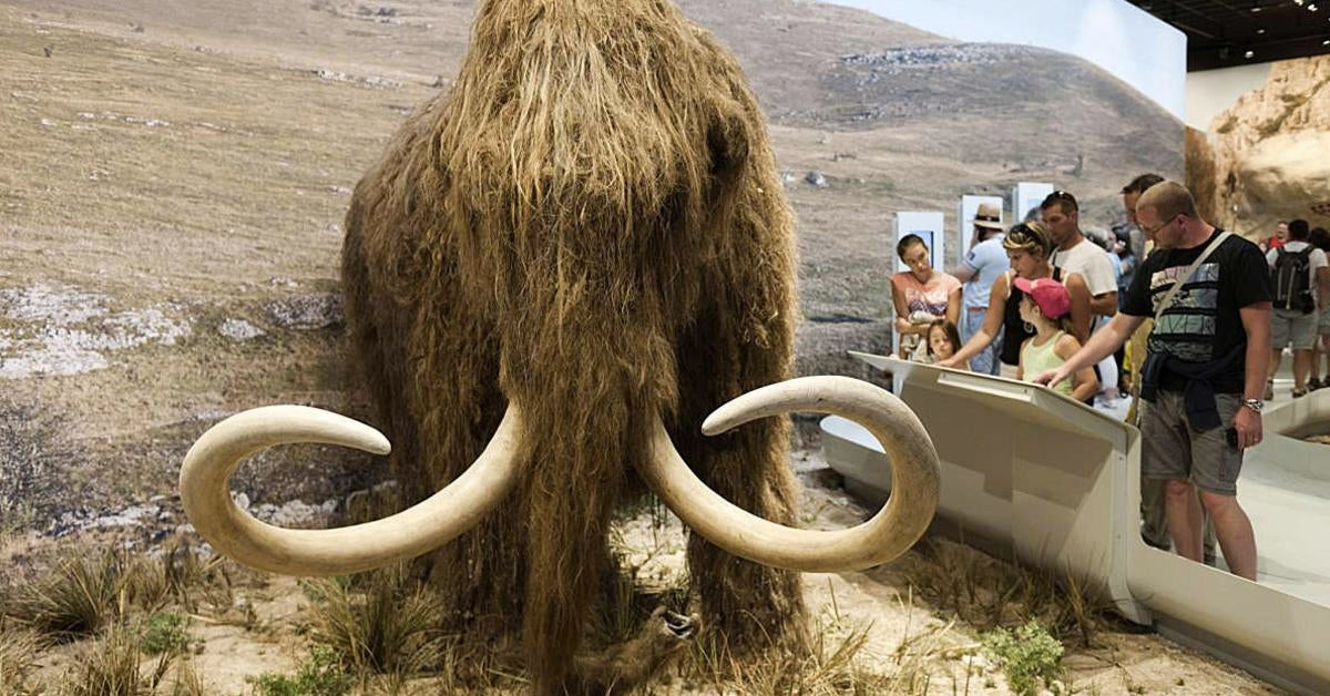 Scientists Trying To De-Extinct The Woolly Mammoth
