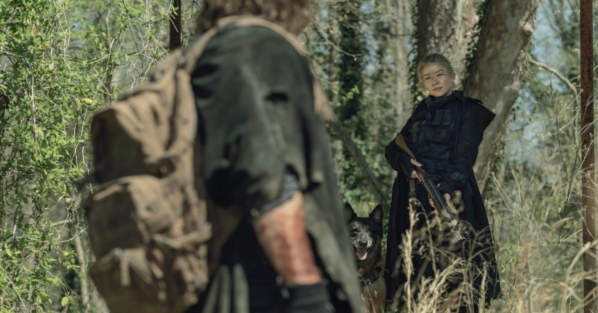 the-walking-dead-daryl-dog-leah-norman-reedus