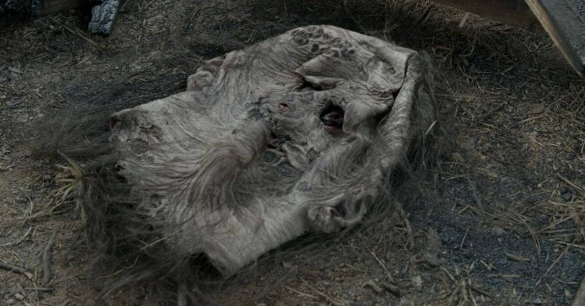 the-walking-dead-whisperers-season-11-episode-5