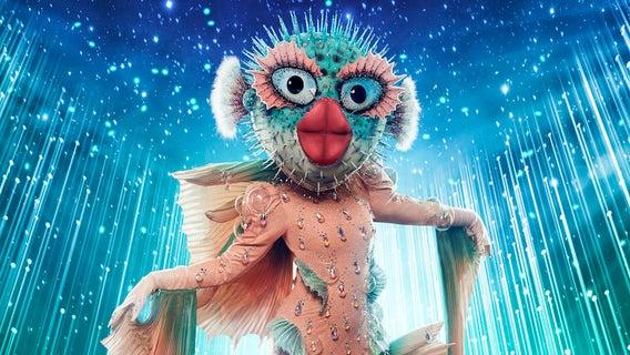 masked-singer-puffer-fish