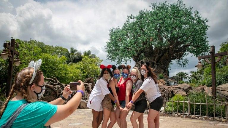 Disney World Begins Demolition of Its Most Divisive Theme Park Ride