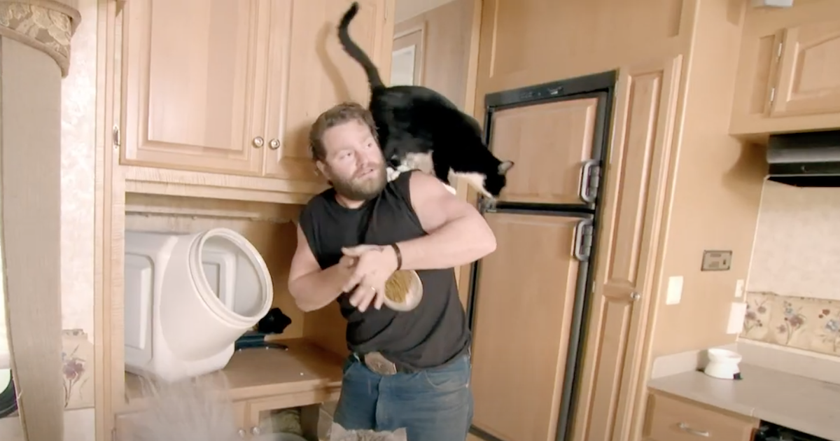 'Alaskan Bush People' Star Gabe Brown Details the Glamour and Misfortune of Cat Sitting (Exclusive Clip).jpg