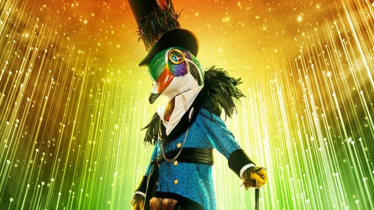 Who Is Mallard in 'The Masked Singer' Season 6?
