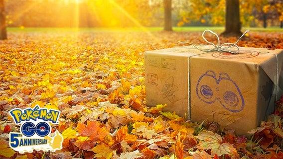 pogo-november