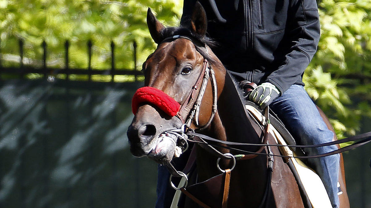 2016 Preakness Stakes: Nyquist odds-on favorite again