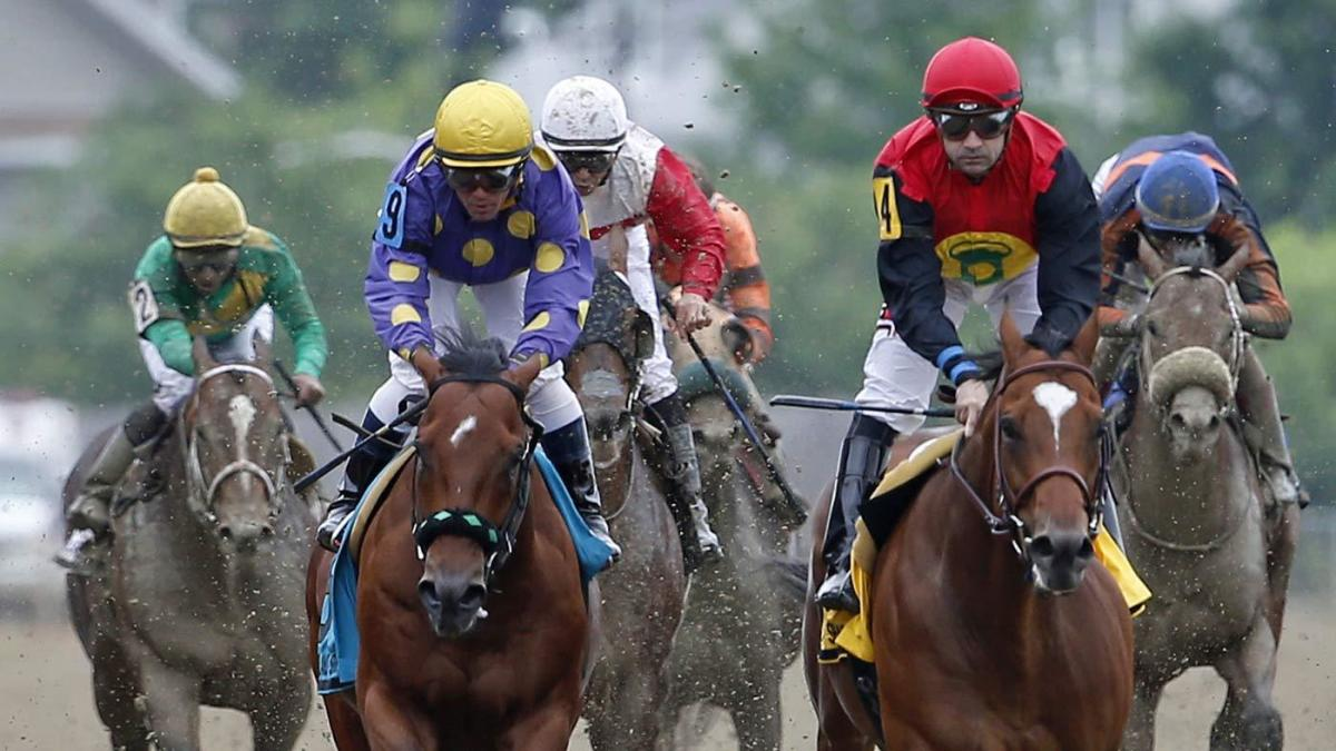 How to bet the Preakness Stakes: Late odds, contenders