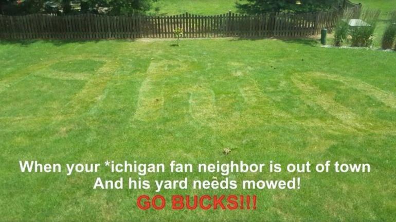 Ohio-state-michigan-lawn