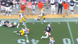WATCH: D.J. Chark returns punt 75-yards for LSU TD
