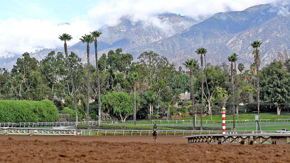 Santa Anita Park Euthanizes 36th Horse Since December As Breeders Cup Nears Cbssports Com