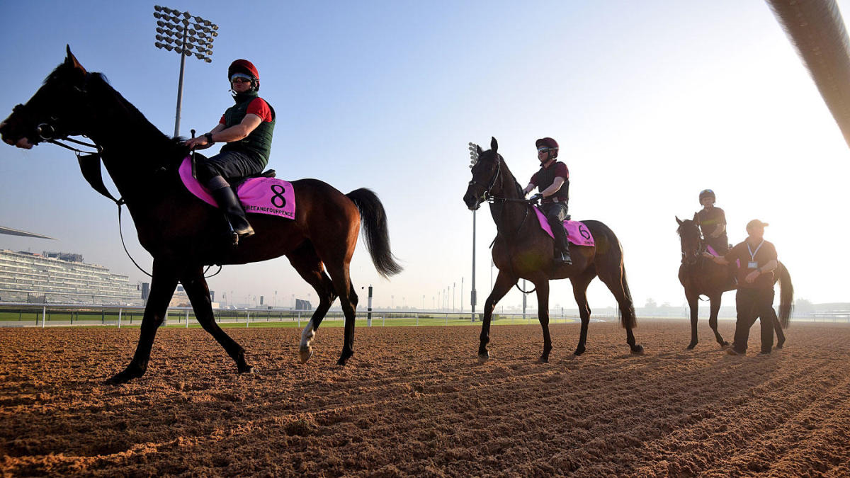 Belmont Stakes odds, best predictions 2019: Expert who