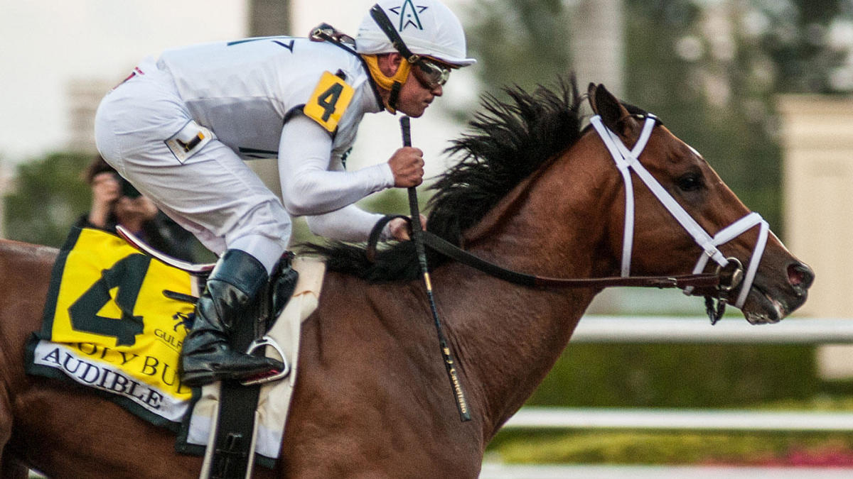 Pegasus World Cup 2020 lineup, field, contenders: Picks, predictions from dialed-in handicapping champion