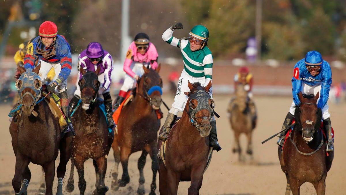 New York Stakes odds, predictions 2019: Proven horse racing handicapper reveals picks