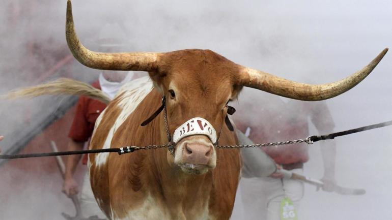 cab08ef74f5 WATCH  Texas mascot Bevo charges Georgia mascot Uga in 2019 Sugar Bowl  pregame