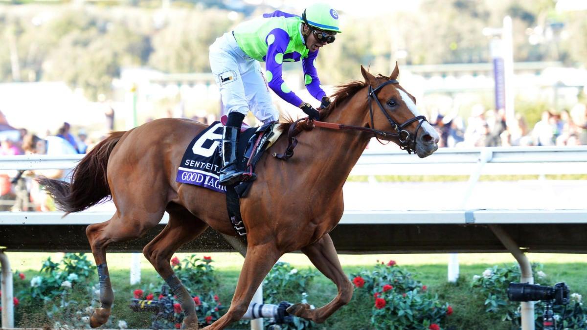 2019 Pegasus Stakes odds, contenders, lineup: Maximum Security