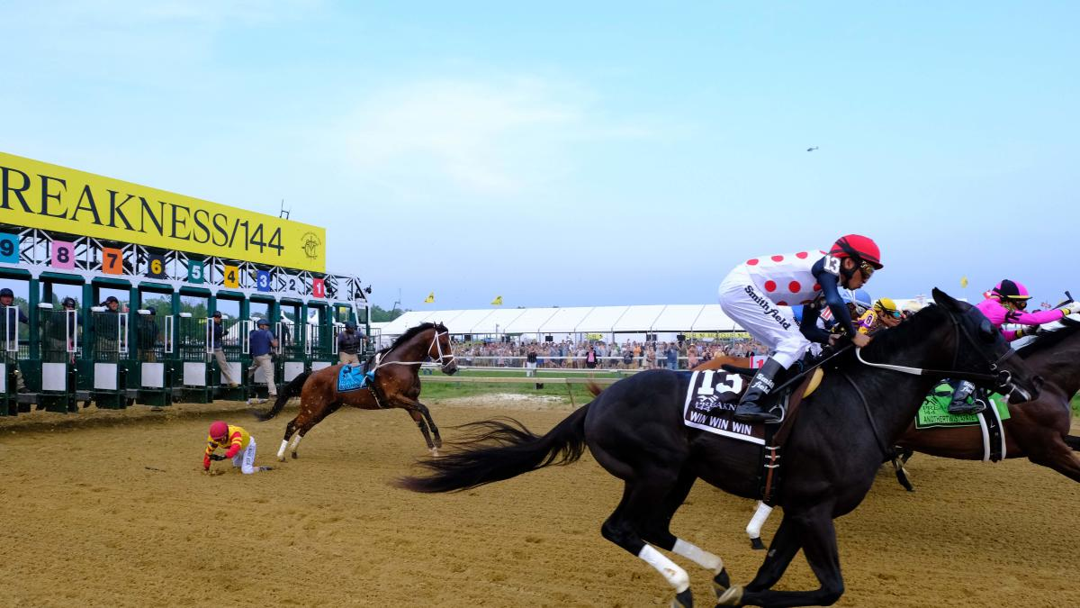 LOOK: Bodexpress runs entire 2019 Preakness Stakes without a
