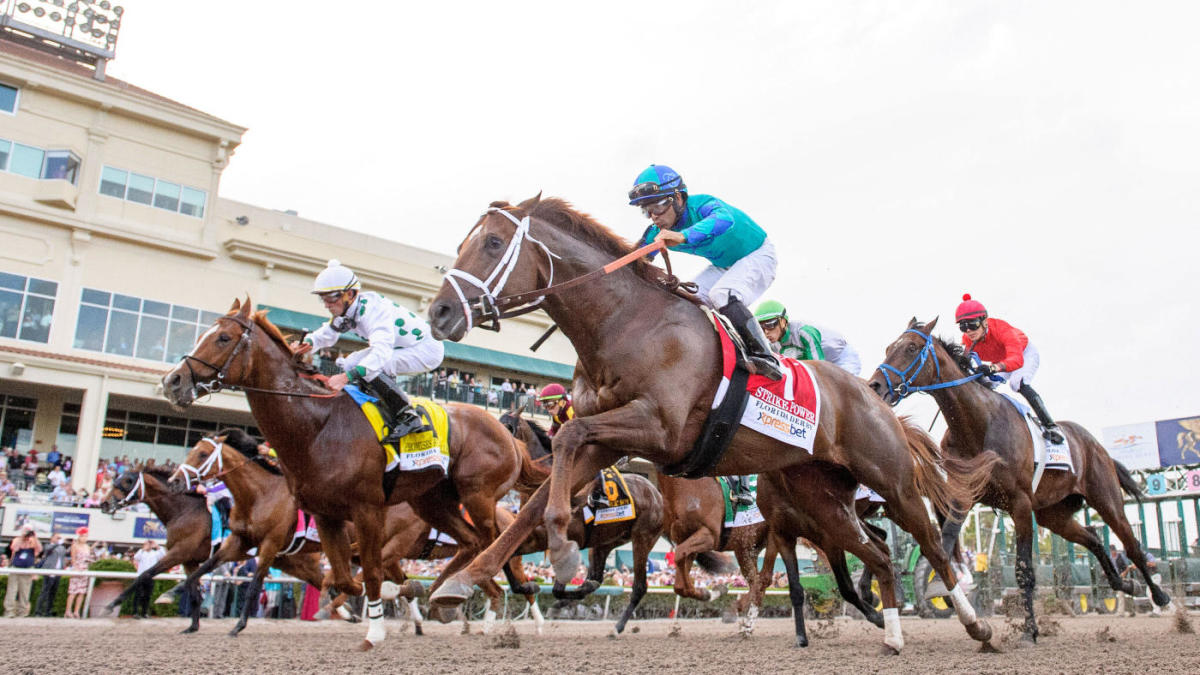 Tax on horse racing betting tips sport odds betting