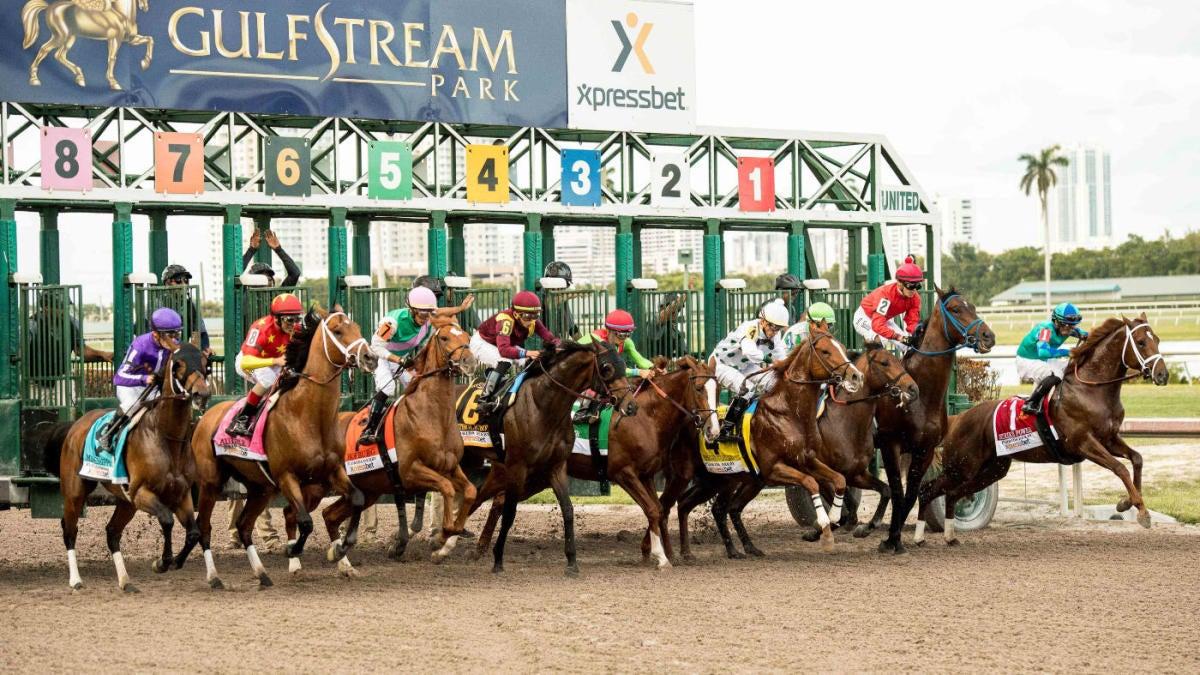 Gulfstream horse racing betting odds mlb betting trends 2021