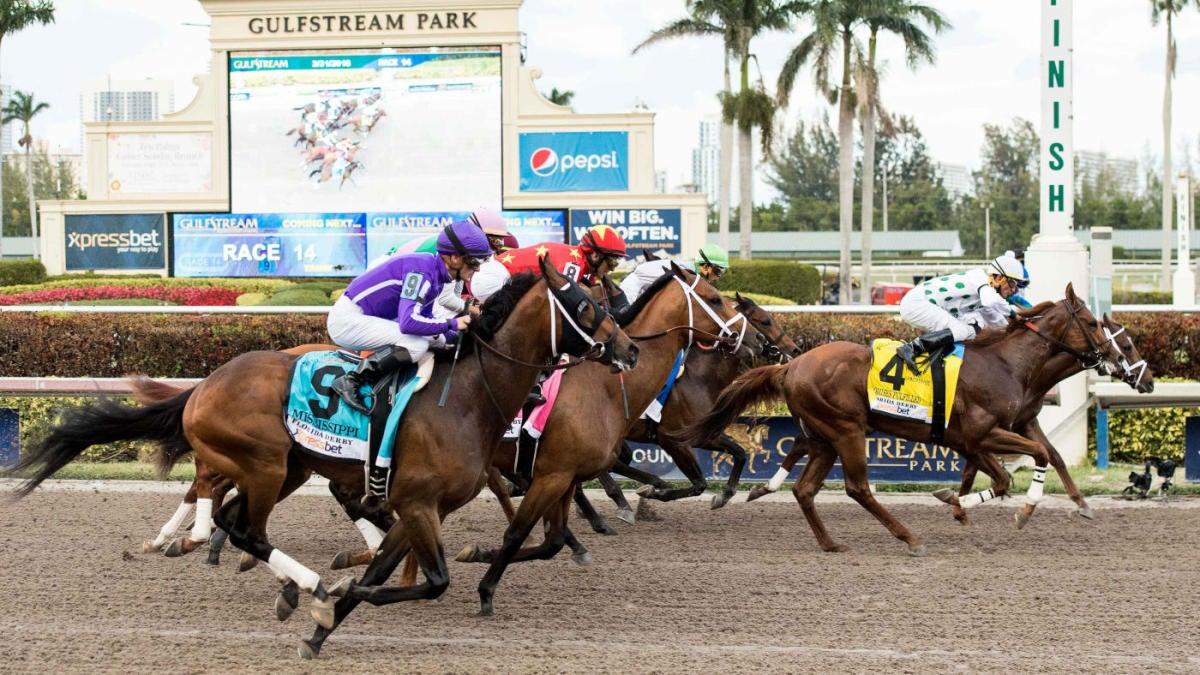 Gulfstream park horse racing oddschecker betting binary options pro traders