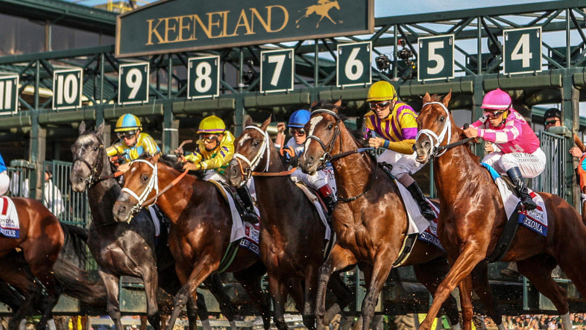 Place bets on breeders cup virginia tech miami betting line