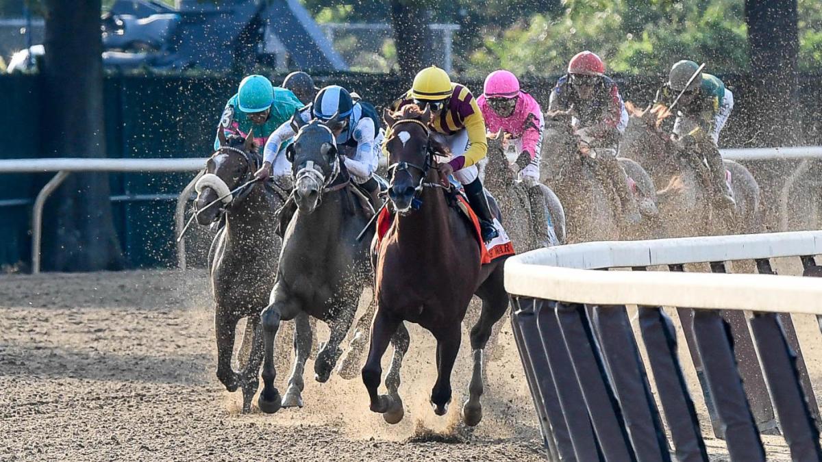 2021 Mister D. Stakes probabilidades, caballos, predicciones: el campeón de handicap revela selecciones, mejores apuestas